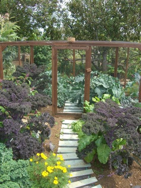 102 Best Vegetable Garden Enclosures Images On Pinterest Vegetable Garden Enclosures