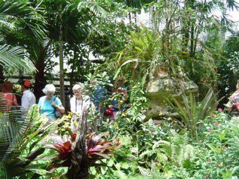 Gainesville Butterfly Garden by Gainesville Butterfly Garden