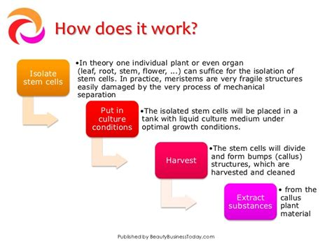 How Does A Planter Work by Innovation In Cosmetics Plant Stem Cell Technology