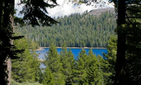 Lake Alpine Cabins by Lake Alpine Valley Ca Top Tips Before You Go