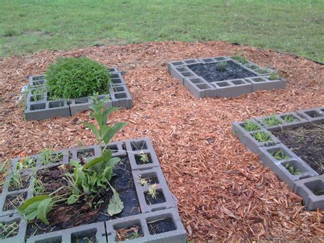 cinder block raised bed beppycat co cinder block raised bed herb garden