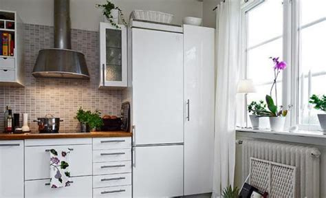 Kitchen Decorating Ideas With Plants How To Decorate Kitchen With Green Indoor Plants And Save