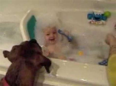 baby laughing at dog in bathtub laughing baby and bubble eating dog youtube