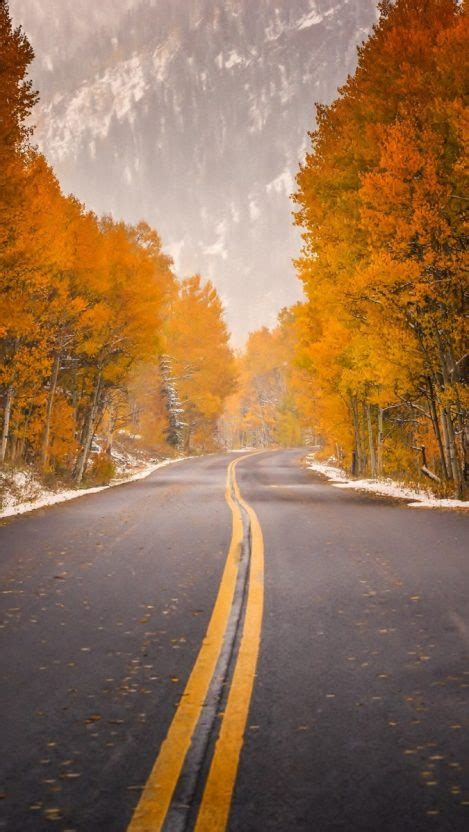 road highway autumn trees foliage forest mountain iphone