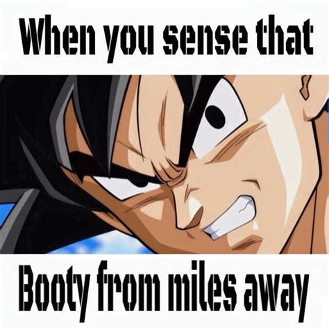 Dragonball Z Meme - 241 best dragonball z memes images on pinterest dbz