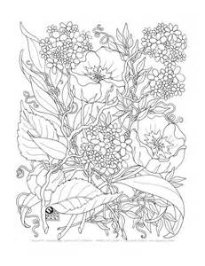 printable coloring pages for adults only printable coloring pages for adults only chuckbutt