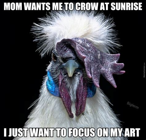 rooster meme rooster doesn t need your judgment by biglerm meme