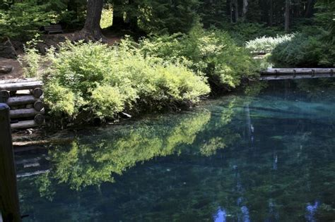 Clear Lake Cabins Oregon by Clear Lake Falls Oregon Images