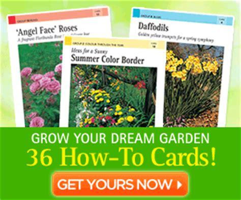 Gardening Made Easy Cards Gardening Binder With 36 How To Gardening Cards 7