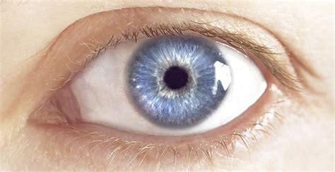 imagenes ojos grises cient 237 ficos afirman que el color de tus ojos dice mucho de