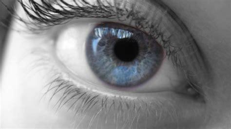 glaucoma alimentazione come combattere il glaucoma con l alimentazione deabyday tv