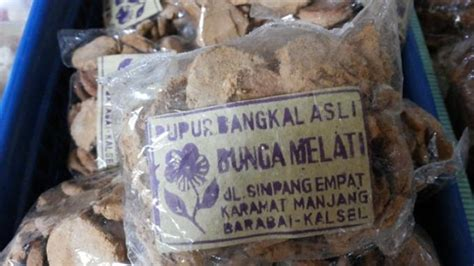 Bedak Dingin Sari Bengkoang pupur dingin dan pupur bangkal bedak tradisional khas
