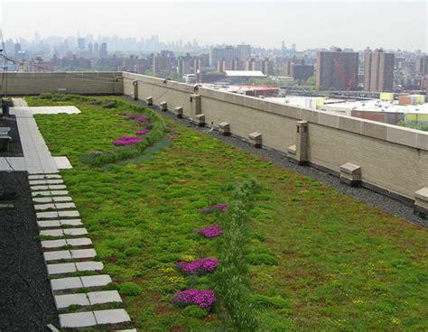 tetto giardino vantaggi tetti verdi tipologie realizzazione e vantaggi