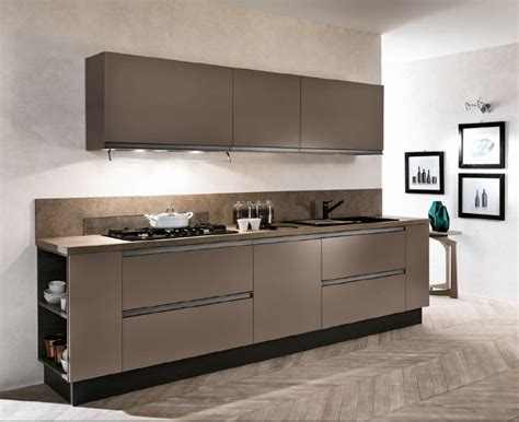 cucina e forno cucina lineare con colonne frigo e forno laccata opaca