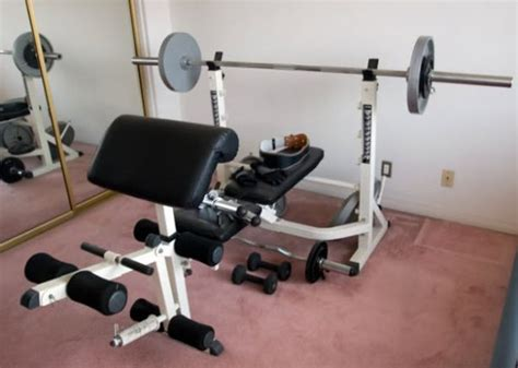 powerhouse bench press impex powerhouse bench espotted