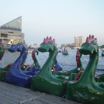paddle boats baltimore md team chessie inner harbor paddleboats and electric boats