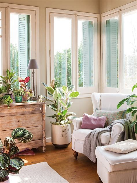 decora con plantas de interior decora con plantas y 161 gana salud decorar con plantas