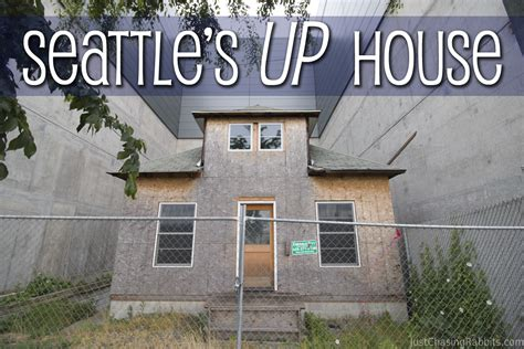 seattle up house seattle s up house just chasing rabbits