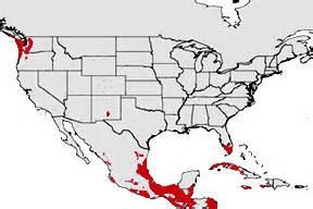 pythons in florida map invader updater science