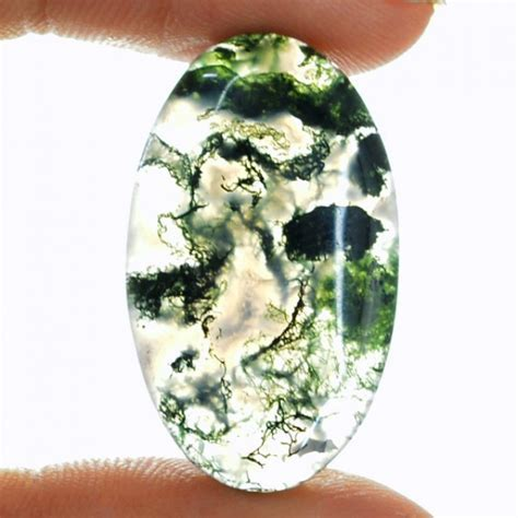 Moss Agate   Crystal Meaning   Gem Rock Auctions