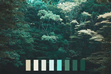 landscape colors nature light blue color palette dark
