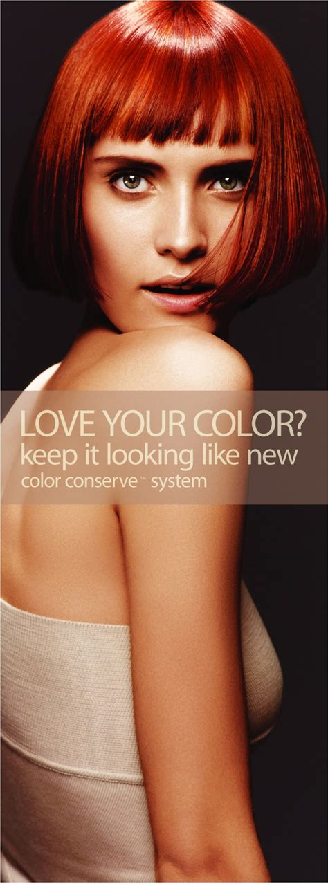 aveda color shoo 10 images about aveda hair color on aveda
