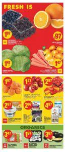 no frills new year flyer no frills flyer new year sale 1 jan 2018