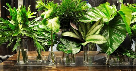 oversized tropical leaf centerpieces arches