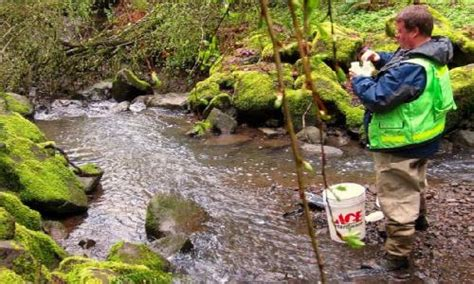 Environmental Scientist Description by Green For Environmental Science Majors