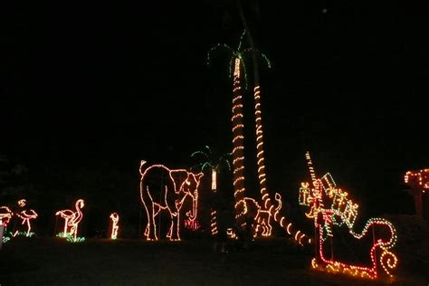team vitale christmas lights at sarasota s jungle garden