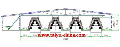 poultry hatchery layout design galvanized al wire poultry cages for layer chicken buy