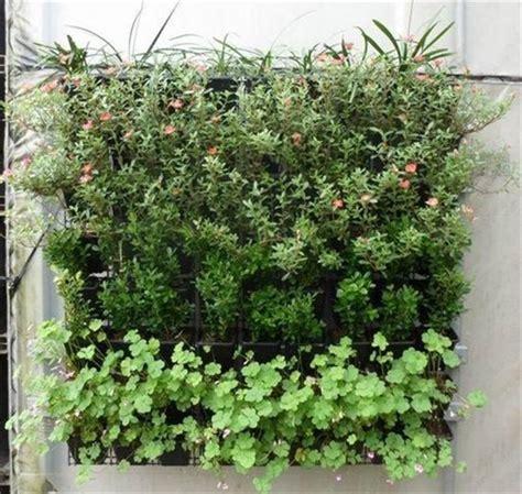 Hangende Planten Binnen by Bol Plantenhanger 9 Zakken Plantenbak Plantenrek