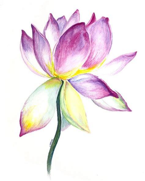 watercolor lotus flower tattoo water color flowers lotus flower watercolor