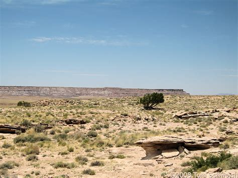 Apache County Records Photo Higher Area With A Few Junipers