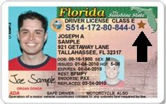 Florida Drivers License Lookup Florida Driver S Test And Licenses Info Links For Fl Driver Safety Cantor S Driving