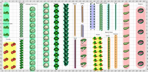Vegetable Garden Layout Plans And Spacing Planning A Vegetable Garden Layout With Brussels Sprouts Tomato Spinach Bok Choy Broccoli Carrot