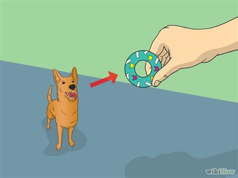 how to teach a puppy to shake how to a lesson 6 breeds picture