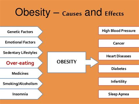 sle cause and effect essay on obesity sle cause and effect essay on obesity 28 images sle