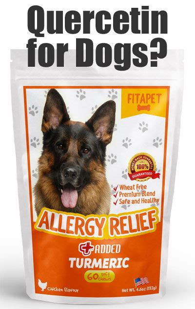 what can you give a for relief fitapet allergy relief for dogs does it work