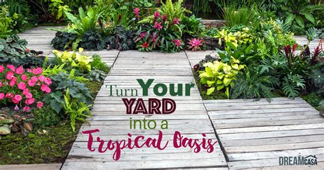 how to turn your backyard into an oasis outdoor patio ideas turn your yard into a tropical oasis