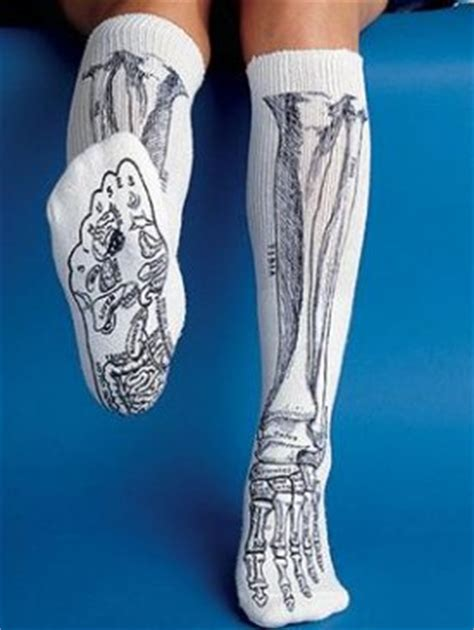 anatomically correct dolls definition anatomical of the human human anatomical