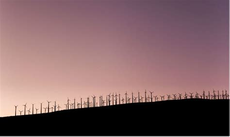 Go In A Neutral by Go Carbon Neutral David Suzuki Foundation