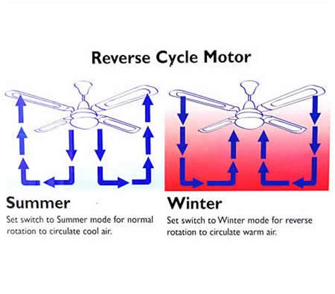 reversible ceiling fan wiring diagram image collections