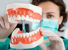 dental hygiene curriculum