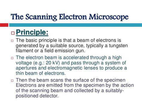 schottky field emission scanning electron microscope su5000