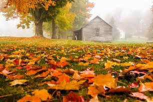 In Fall Fall Foliage Photo Gallery New Today