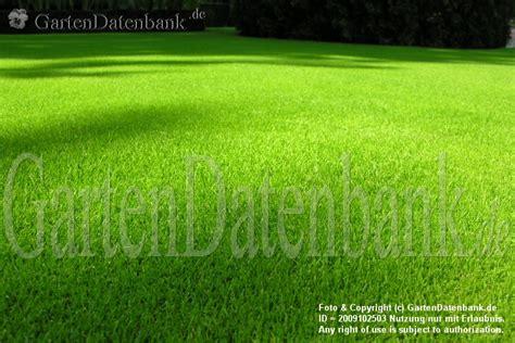 Unkraut Im Rasen Bekämpfen by Rasen Pflege Lawn Care Set V 1 0 Fs2015 Farming Simulator