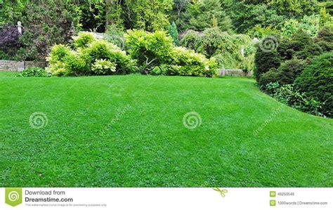 green grass landscaping beautiful garden stock photo image 46250546