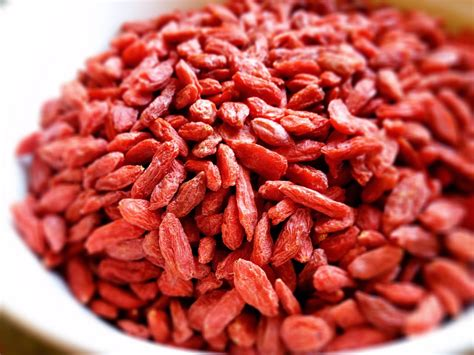 Goji Berry newport local news moment for health go healthy with goji berries newport local news