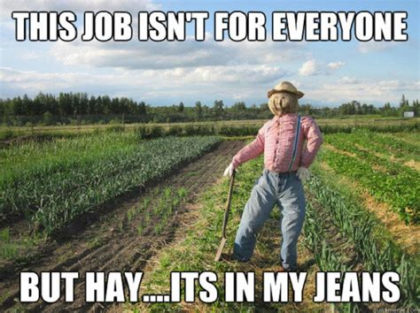 Funny Job Memes - these are 21 of the worst puns ever but they still made